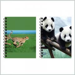 Back to school spiral notebooks